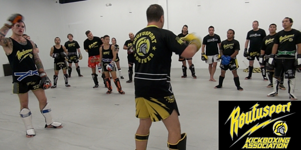 professional kickboxing association